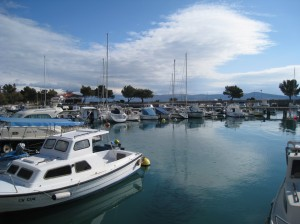 One of the many marinas in Crikvenica - look at the fish!