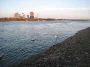 The Danube River
