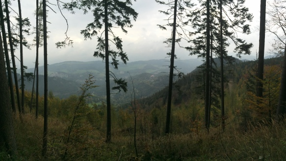 Panoramic shot of the valley