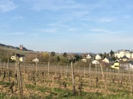 Rudesheim, Germany. Abbey of Hildegard von Bingen