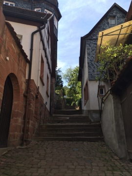 Stairs up to the castle trail