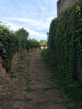 The path to the castle