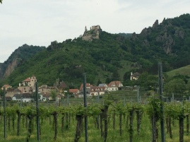 Vineyards and the castle