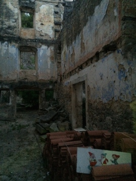 Eerie building ruins with unlikely residents