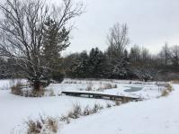 Graf Pond
